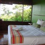 Bedroom overlooking rainforrest.