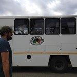 Chameleon bus