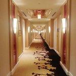 Room hall way