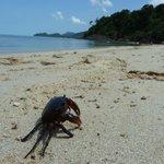 Тот самый ЛУЧШИЙ пляж на Ко Чанге