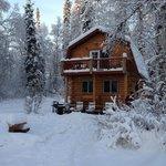 Chinook Cabin