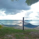 Hammocks at the beachfront (about 40 feet from our door)
