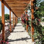 The beautiful pergola of the garden