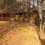 Chata grillowa przykryta strzechą.
