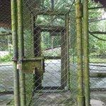 Eingang zum Bogel-Käfig
