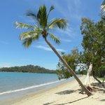 Wunderschöner Strand (leider nicht zum Baden!)