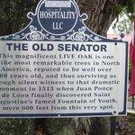 Old Senator sign