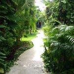 ingresso al patio