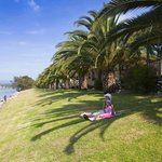 Relax on the banks of the Moruya River