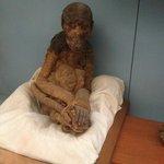 Monkey Mummy