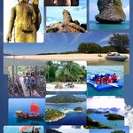 Selection of private tours