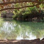 Park of Springs