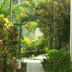 Weg zwischen den bungalows