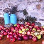Con éstas preciosas manzanas su dueño prepara unas delicias para acompañar sus platos.....