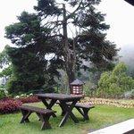 meja piknik di depan bungalow