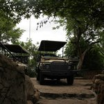 The 4x4 jeep that takes us on our game drives