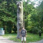 Pomeranian Princes Park