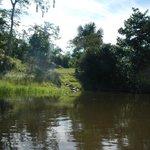 afluente navegable rio nanai