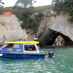 Cathedral Cove cruise