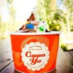 Cuppa Yo Photo