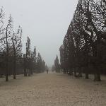 Photo of Schonbrunn Palace taken with TripAdvisor City Guides