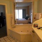 View of Bedroom from Bathroom