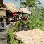 Restaurants and Cafes overlooking the rice terrace