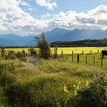 on the way to Manapouri lake from Te anau