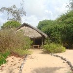 PRIVATE SAFARI ECO TENTED CAMP RIGHT BY THE SEA