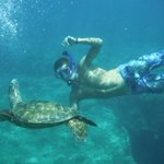 get close and personal with the sea life (just don't touch the endangered species) ;)