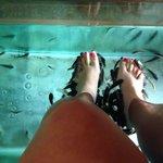 Fish foot spa.