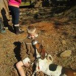 bassett hound played with us