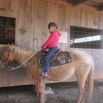 daughters horse