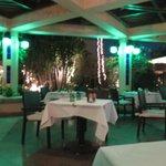 excellent Lebanese restaurant