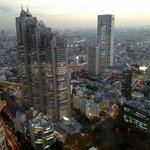 Tokyo Metropolitan Government Office panoramic view