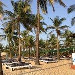 bigger part of beach beds