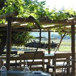 Viu Manent vineyard restaurant