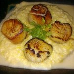 Scallops and grits seved atop onion soubise