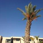 Clear blue sky in winter