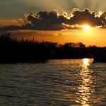 Esteros de Ibera paisaje