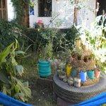 Jardin De Hierbas