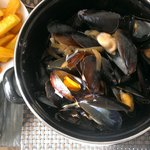 plump, juicy mussels