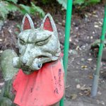 Fox at Sasuke Inari Shrine