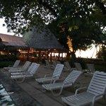 Matapalo Restaurant area and bar