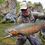 A trophy trout caught in the South Island on a guided trip with Stu Tripney