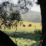 Broughton Mill Farm