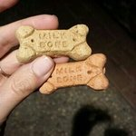 treats for our dogs ♥♥♥