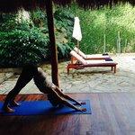 Practice Yoga in a Garden Oasis