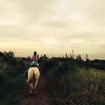 Great horseback ride