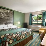Spacious king bedded rooms